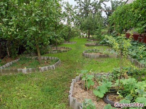 Любого вида сад хорош уж потому что